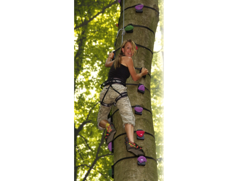 http://www.parcoavventuraresinelli.it/wp-content/uploads/tree-climbing-600x800.png